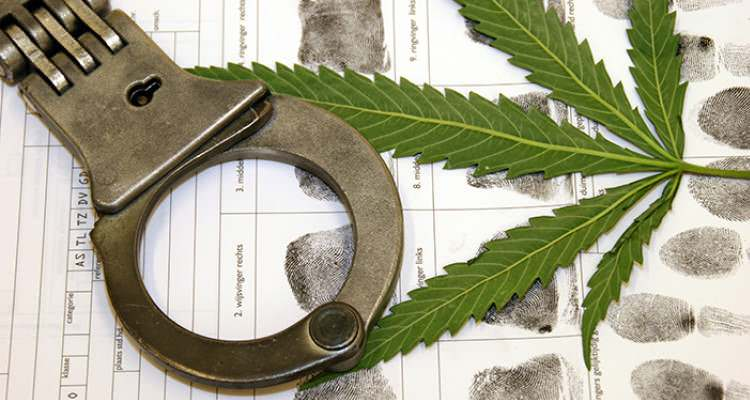 A single leaf of marijuana, handcuffs, and fingerprints of a person.