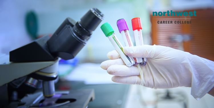 phlebotomist holding blood sample