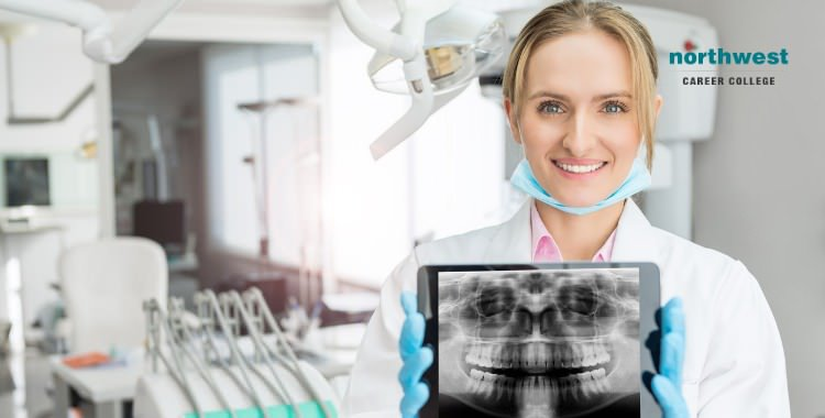 dental-assistant holding dental xray report