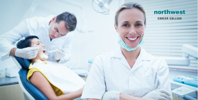 dental admin assistant at work