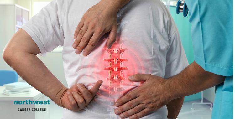 mature back pain