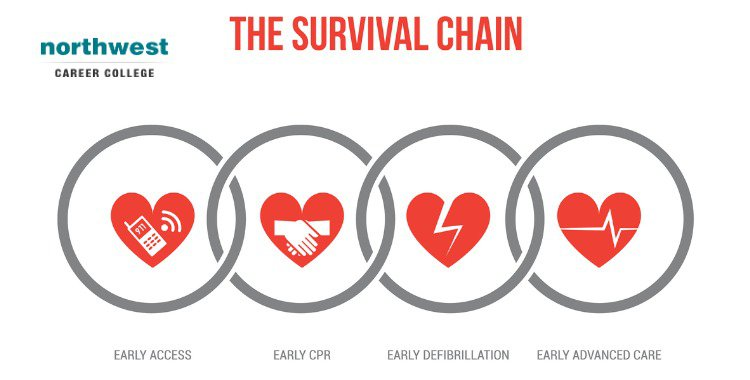 Essential Steps of CPR