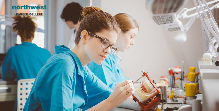 dental assistant learning prosthetic dentistry
